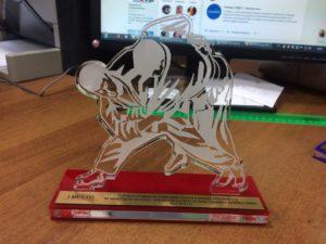Статуэтки для победителей и призеров для Открытого традиционного турнира по дзюдо на призы Героев- жителей города Электросталь