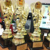 Награды для подведения Спортивных итогов 2017г в Ногинском муниципальном районе.