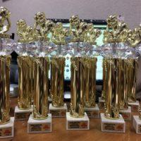 Кубки для победителей в турнире среди бойцовских клубов Щелковского района TOP FIGHTER 2018